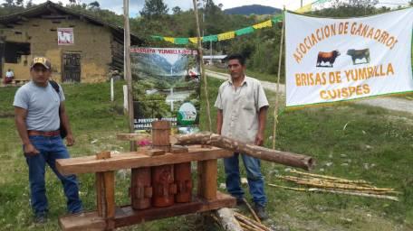 Cuispes Amazonas Perú